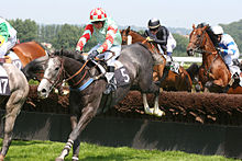 220px-Deauville-Clairefontaine_obstacle_2