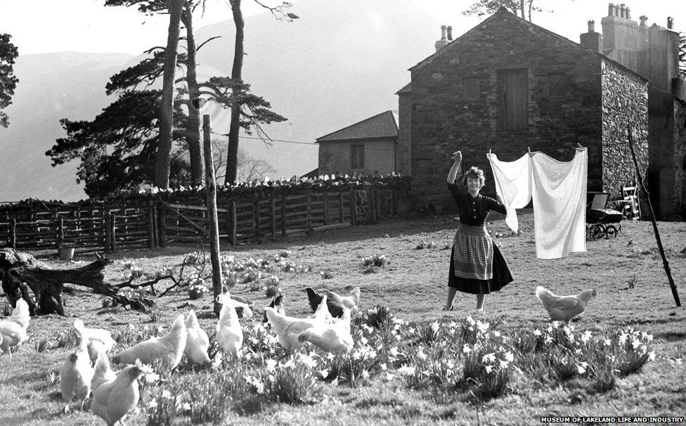 _78209280_womanwithchickens_new